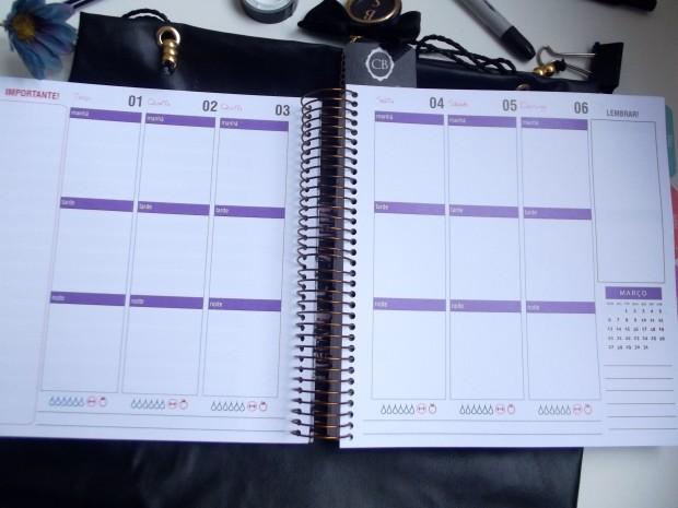planner 20166